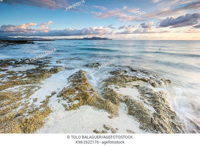 playa de Es Dolç y punta Llarga de Son Real, bahia de Alcudia, Santa Margarida, Majorca, Balearic Islands, Spain