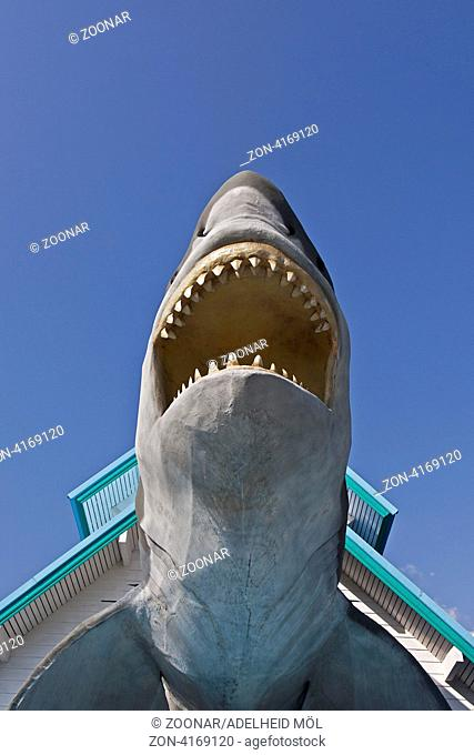 Eingang mit Figur Weißer Hai, Aquarium Chiang Mai, Thailand, Südostasien Entrance with great white shark, aquarium, Chiang Mai, Thailand, Southeast Asia