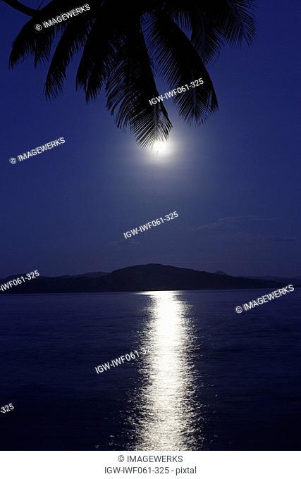 Fiji, Taveuni, Moon behind palm leaf reflecting in sea