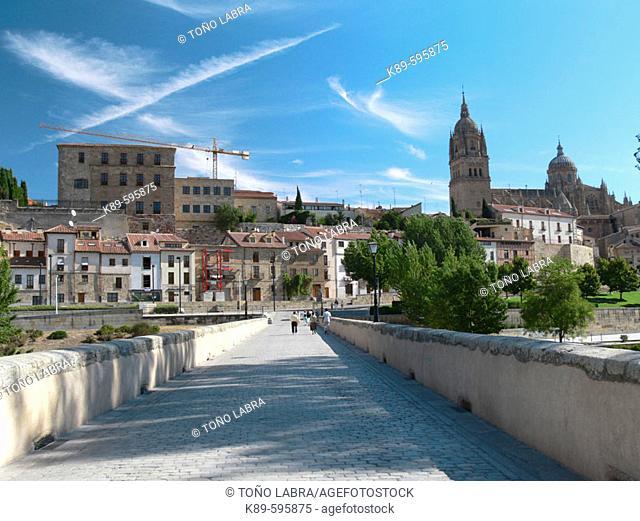 Roman bridge. Salamanca. Castilla-León, Spain