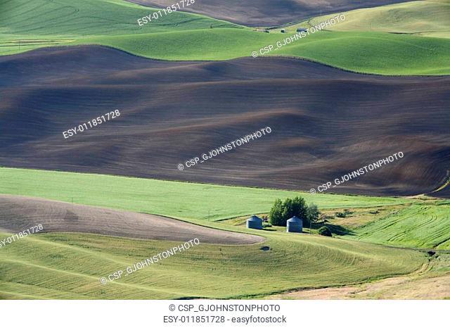 Little farm in the vast land