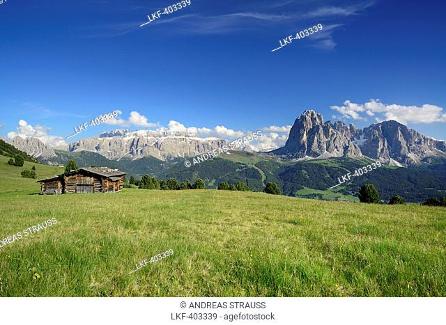 Meadow with farmhouse in front of Sella and Langkofel, Val Gardena, Dolomites, UNESCO world heritage site Dolomites, South Tyrol, Italy