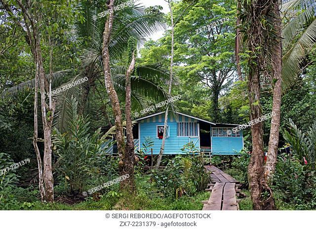 House In The Ngobe Bugle Indian Village Of Salt Creek Near Bocas Del Toro Panama. Salt Creek (in Spanish: Quebrada Sal) is a Ngöbe Buglé village located on the...