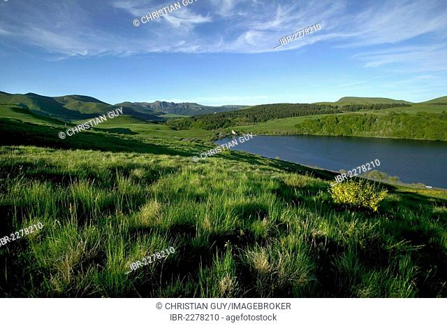 Guery lake, the Sancy massif at back, Monts Dore, Puy de Dome, Auvergne Volcanoes Natural Park, France, Europe