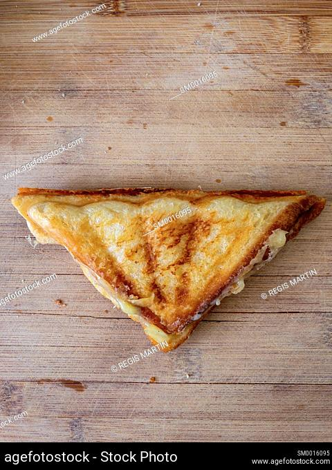 toasted sandwich on a wooden cutting board
