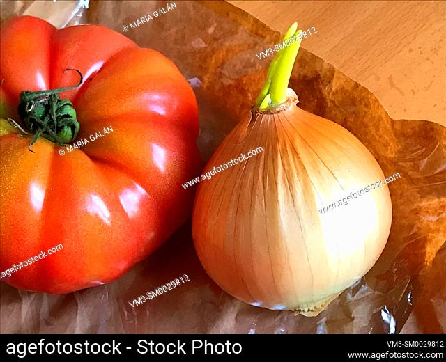 Tomato and onion. Still life