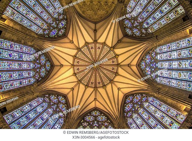 View of Chapter House ceiling dome from directly below, Chapter House York Minster, York, Yorkshire, United Kingdom