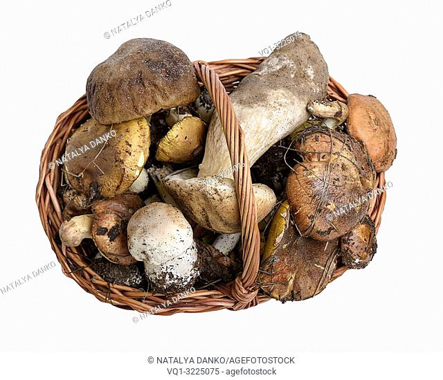 forest edible mushrooms in a brown wicker basket on a white isolated background, top view