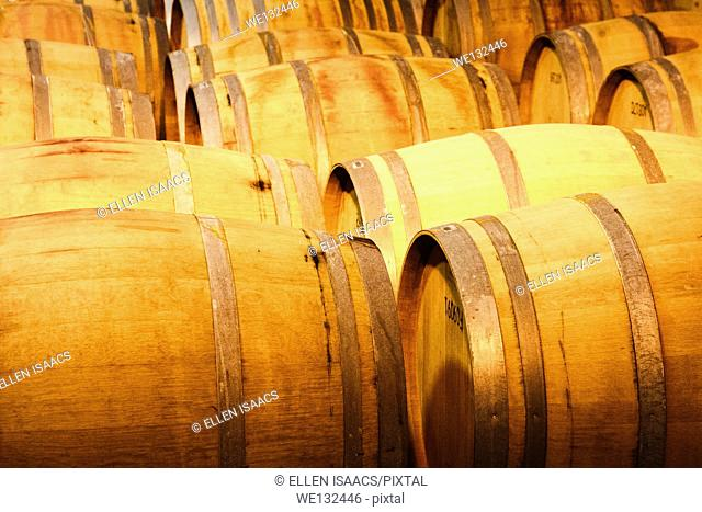 Wooden barrels of wine being stored at a vineyard cellar