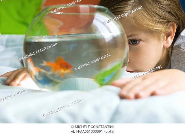 Child watching goldfish swim in fishbowl