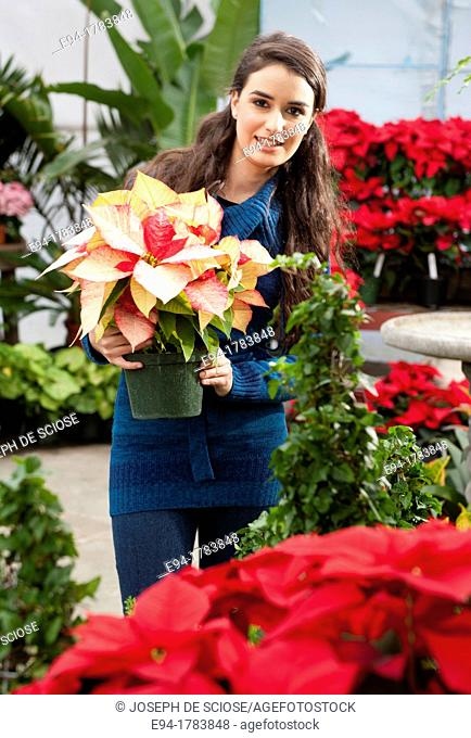 A 21 year old brunette woman shopping for poinsettia plants