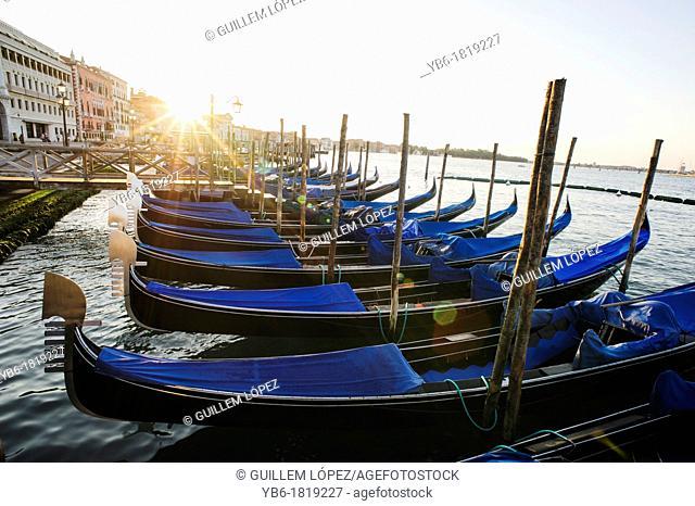 Gondolas moored at the St. Mark's basin during sunrise, Venice, Italy