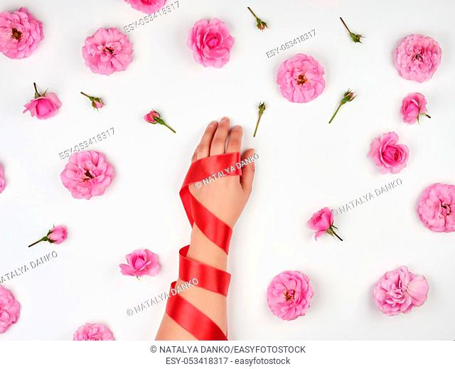 female hand with smooth skin wrapped with red silk ribbon, white background with pink rosebuds, fashionable skin care concept