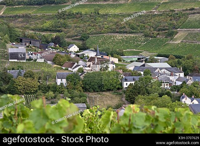 Vineyard around the village of Chavignol, Sancerrois natural region, Cher department, Historic province of Berry, Centre-Val de Loire region, France