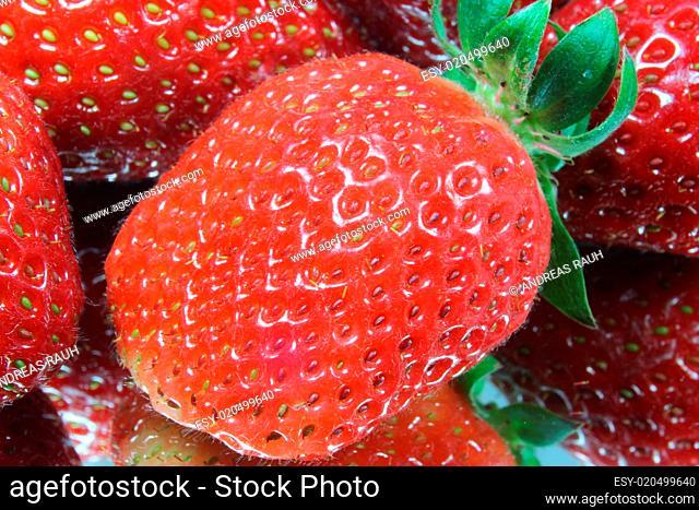 Nahaufnahme Erdbeere