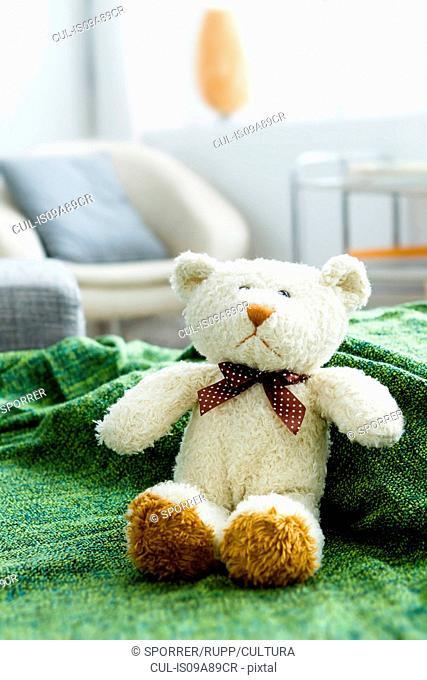 Teddy bear on green blanket