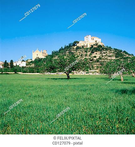 Arta. Majorca. Balearic Islands. Spain