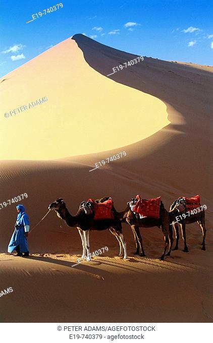 Great Erg Chebbi. Morocco