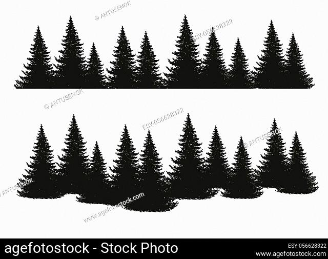 Black silhouettes of conifers isolated on white background. Collection of pines, spruce, larch, cedars. Set of park, forest, landscape elements