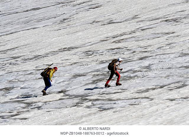 Bresciana Glacier: Mt Adula Rheinwaldhorn - 3402 m, roped party, canton of Ticino, Switzerland
