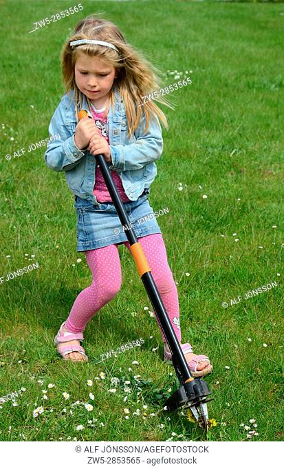 Blond girl, six years old, remove weed in a lawn in Ystad, Scania, Sweden