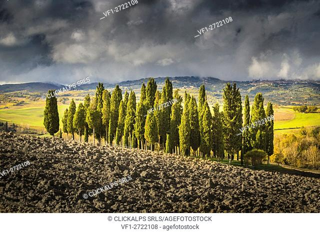 San Quirico d'Orcia, Tuscany, Italy. Cypresses and hills, during a cloudy day