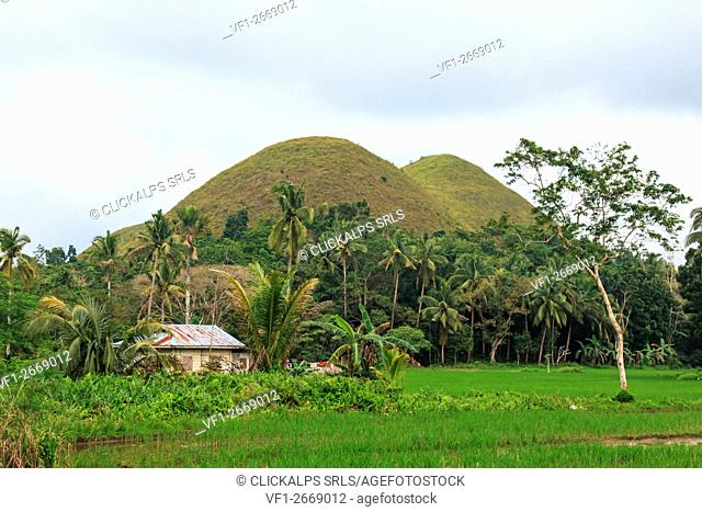 Chocolate hills and farmer house in Bohol, Philippines