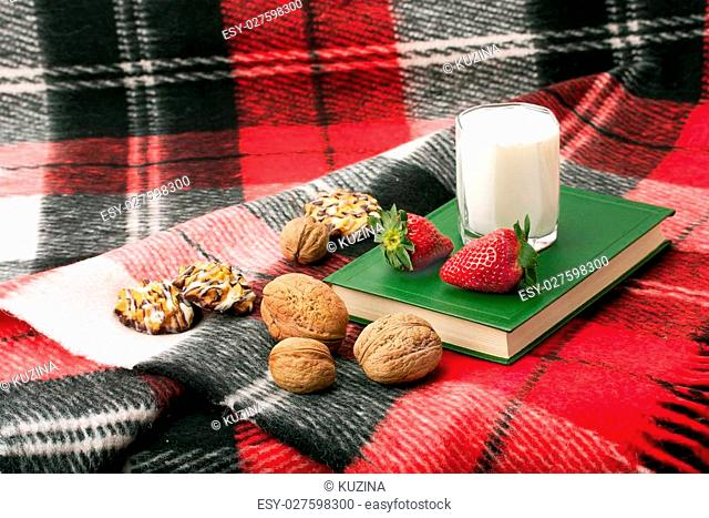 blanket, book and yummy and light dessert