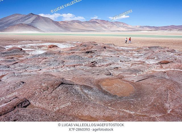 Piedras Rojas (Red Stones). In Salar (salt flats) or laguna (lagoon) de Talar, also called de Aguas Calientes, Altiplano, Puna, Atacama desert