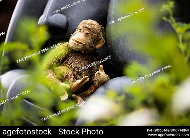 04 June 2020, North Rhine-Westphalia, Krefeld: A small stuffed monkey lies in the arms of a monkey sculpture in front of the zoo