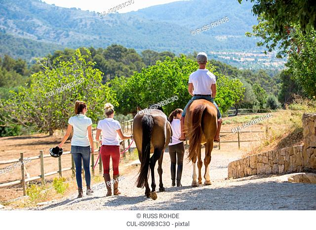 Rear view of female groom leading horse rider along paddock at rural stables