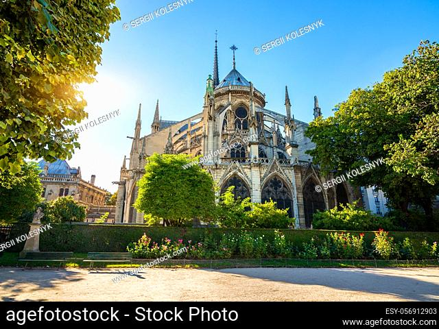 Notre Dame de Paris at sunrise, France