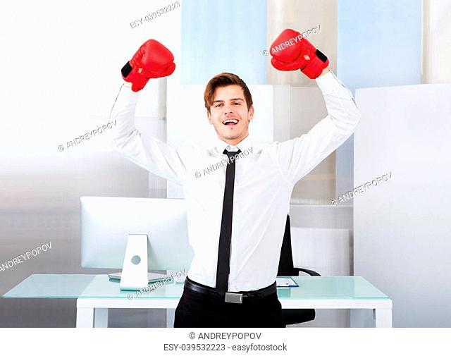 Portrait Of A Successful Businessman Wearing Red Boxing Gloves In Office