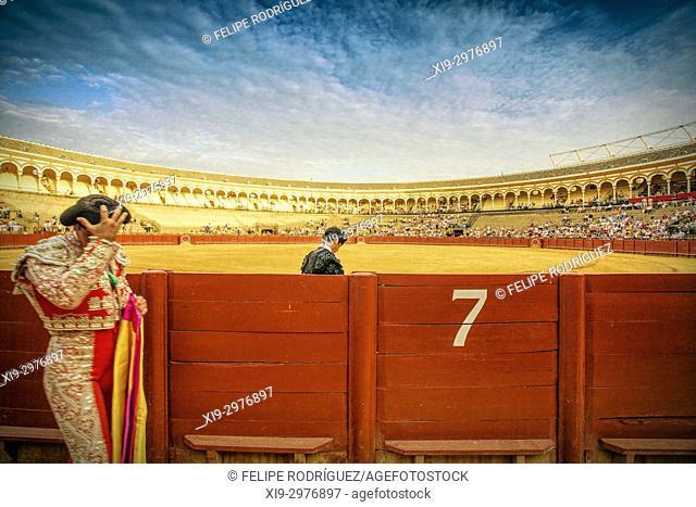Real Maestranza bullring during a bullfight, Seville, Spain