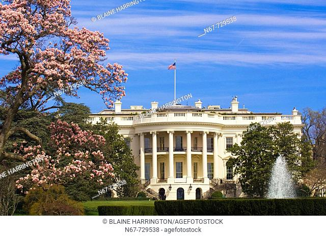 View of the South Lawn of the White House surrounded by cherry blossoms, Washington D C , U S A