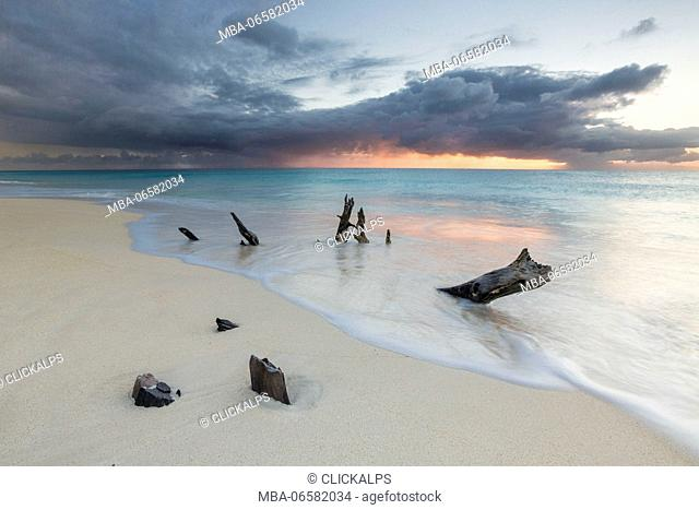 Caribbean sunset frames tree trunks on Ffryers Beach Antigua and Barbuda Leeward Islands West Indies