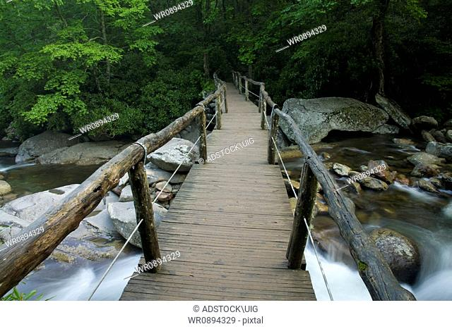 Footbridge, Chimney Tops Trail, Great Smoky Mountains National Park, Tennessee