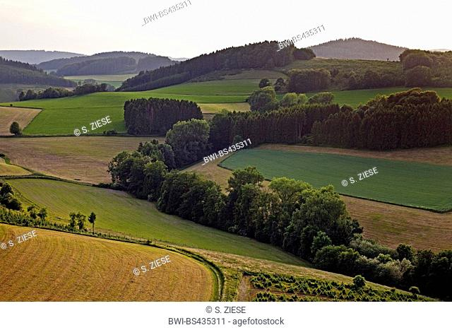 aerial view of hilly field and forest landscape near Menkhausen, Germany, North Rhine-Westphalia, Sauerland, Schmallenberg