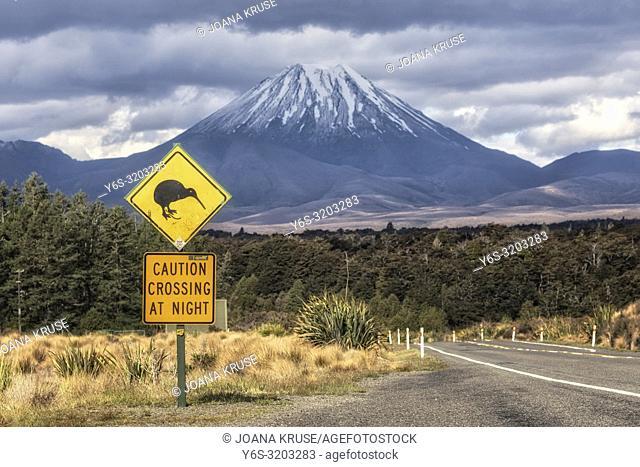 Mount Ngauruhoe, Tongariro National Park, North Island, New Zealand