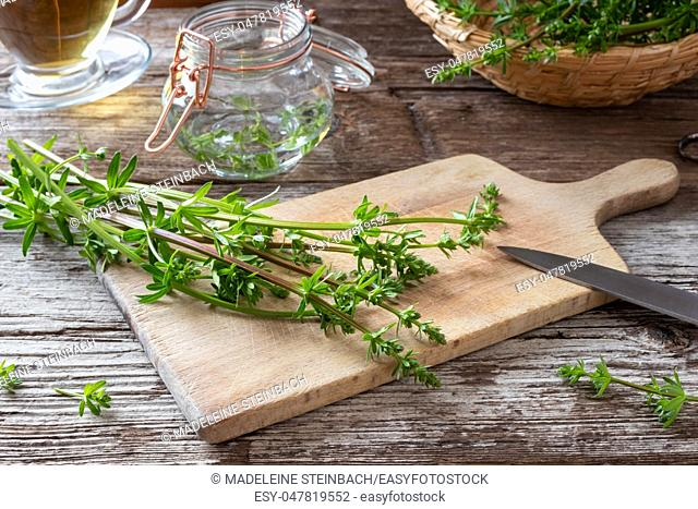 Preparation of herbal tincture from fresh bedstraw