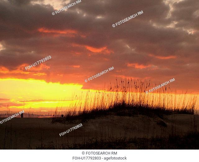 St. Augustine, FL, Florida, Anastasia Island, Anastasia State Park, Atlantic Ocean, dunes on the beach at sunrise