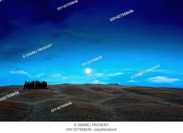 Tuscany night landscape, moon with tree on the fiedl, dark blue