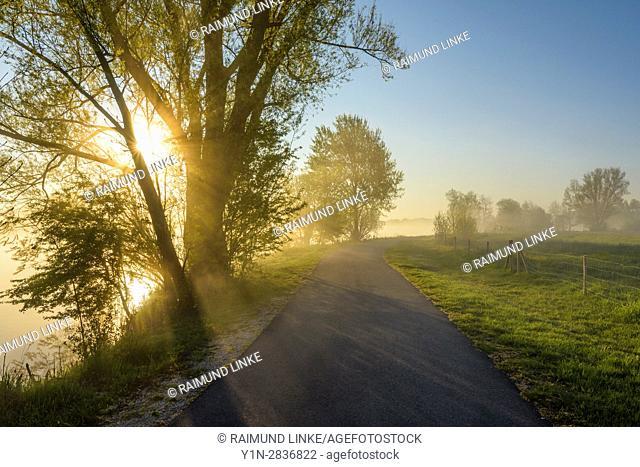 Lakeside way with sunbeams and morning mist, Streudorf, Lake Altmuhlsee, Weissenburg-Gunzenhausen, Bavaria, Germany