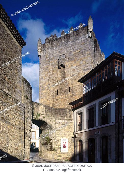 Castle. Salas. Asturias. Spain