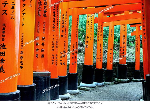 Torii gates, Fushimi Inari-taisha Shrine, head shrine of Inari located in Fushimi-ku, detail, Kyoto, Kansai Region, Japan