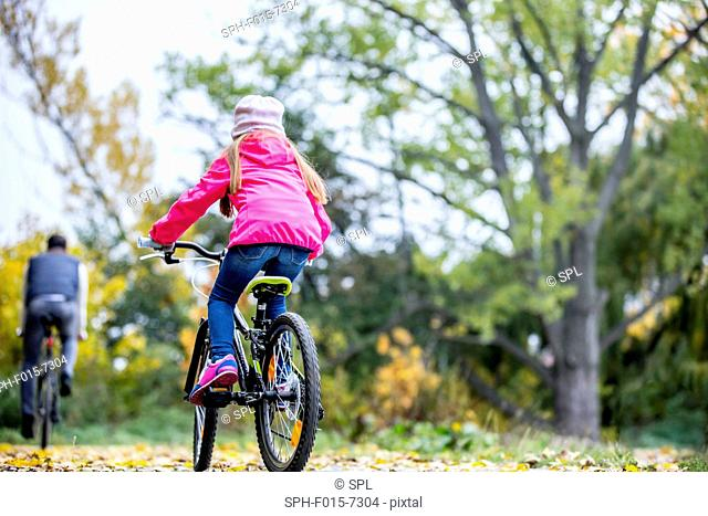 MODEL RELEASED. Rear view of girl cycling in autumn