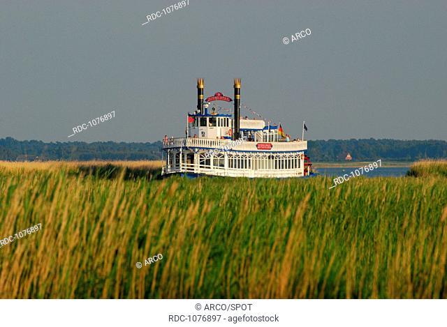 Seenlandschaft, Bodden, Ausflugschiff, Raddampfer, Fischland-Darss, Prerow, Mecklenburg-Vorpommern, Deutschland