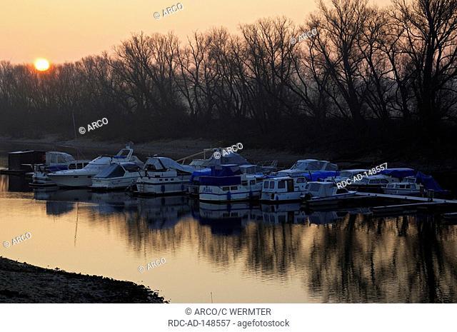 Yacht harbour at sunrise Kleve-Schenkenschanz North Rhine-Westphalia Germany