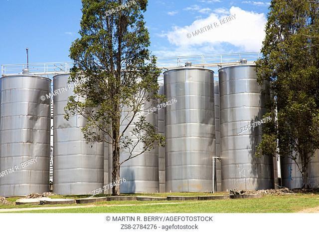 Hunter Valley Wine Region in New South Wales, Australia