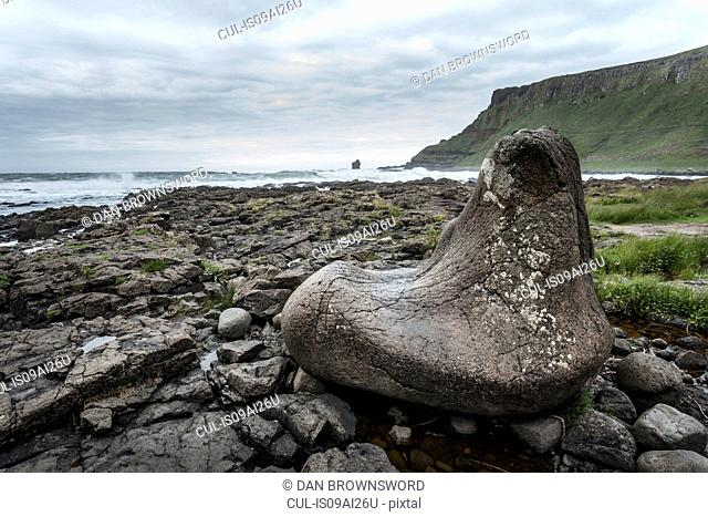 Giants foot, Giants Causeway, Bushmills, County Antrim, Northern Ireland, UK